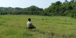 Meditation in the rice paddy