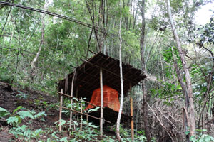 Meditation hut in Bamboo Forest at Tigerland Rice Farm